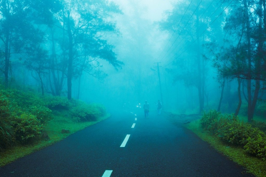 shimla road covered with fog