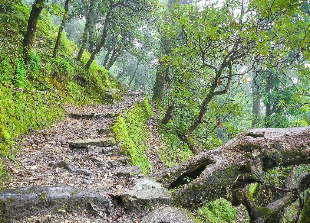 dayara bugyal trek trail