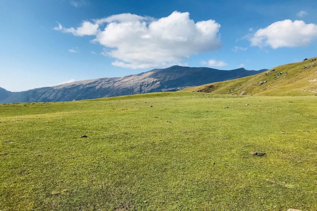 Alpine bugyal enroute brahmatal