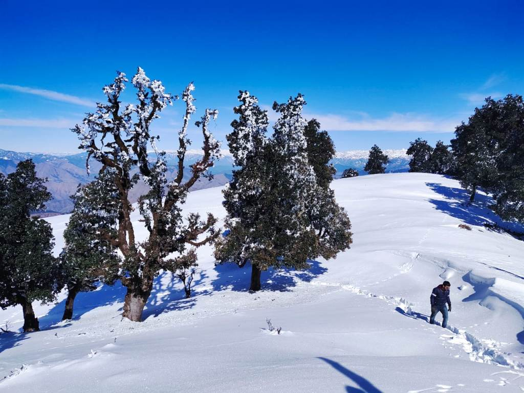 nag tibba trek route covered with snow in december
