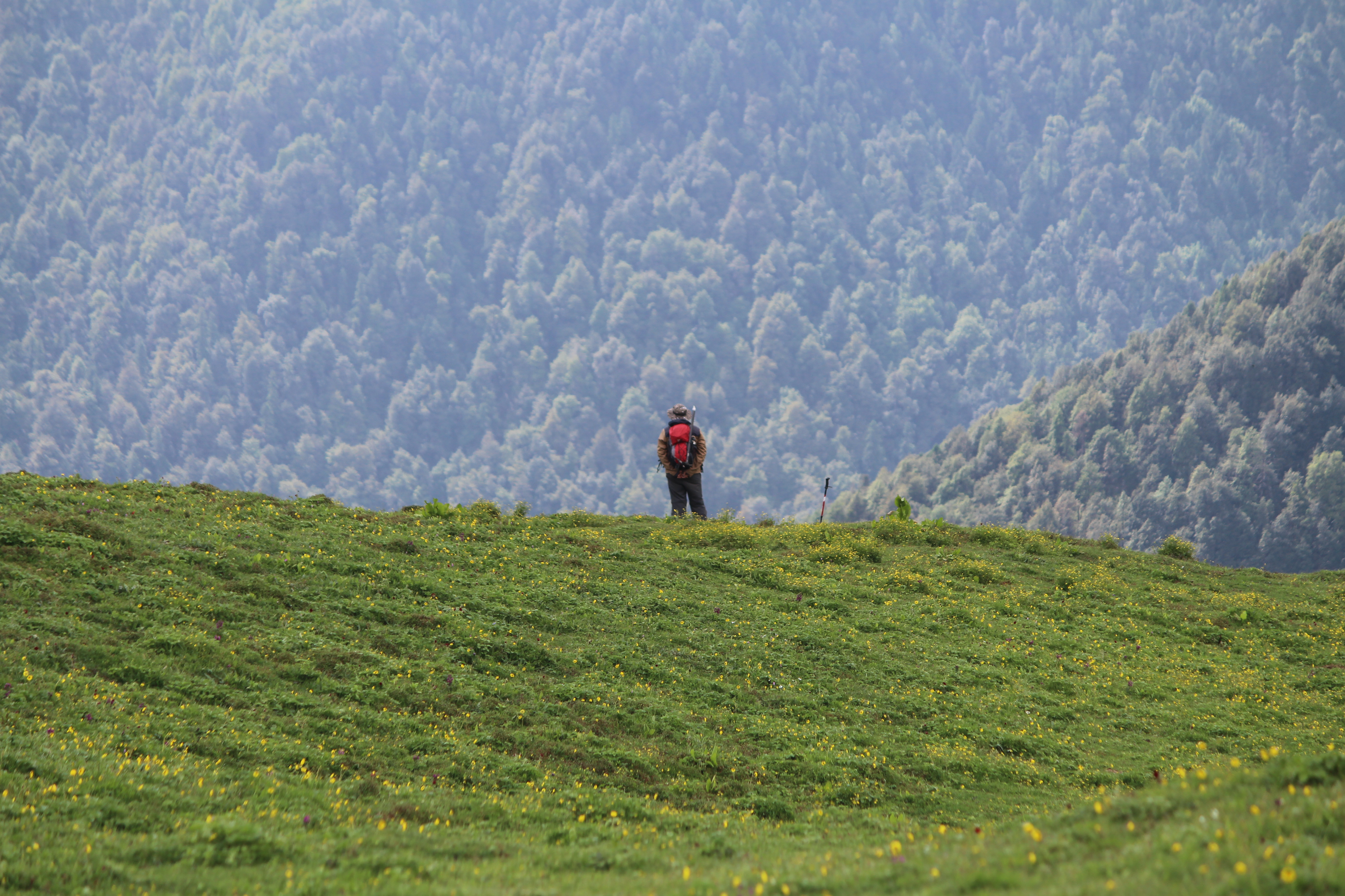 Man carrying a bagpack standing over a green valley lokking over the beauty of nature