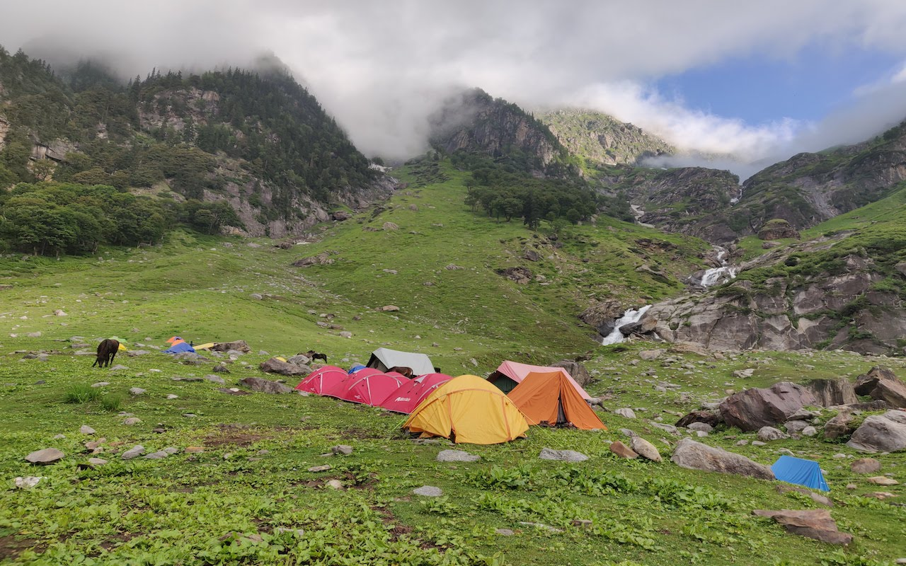 tents pitched and cattle crazing grass at shea goru campsite