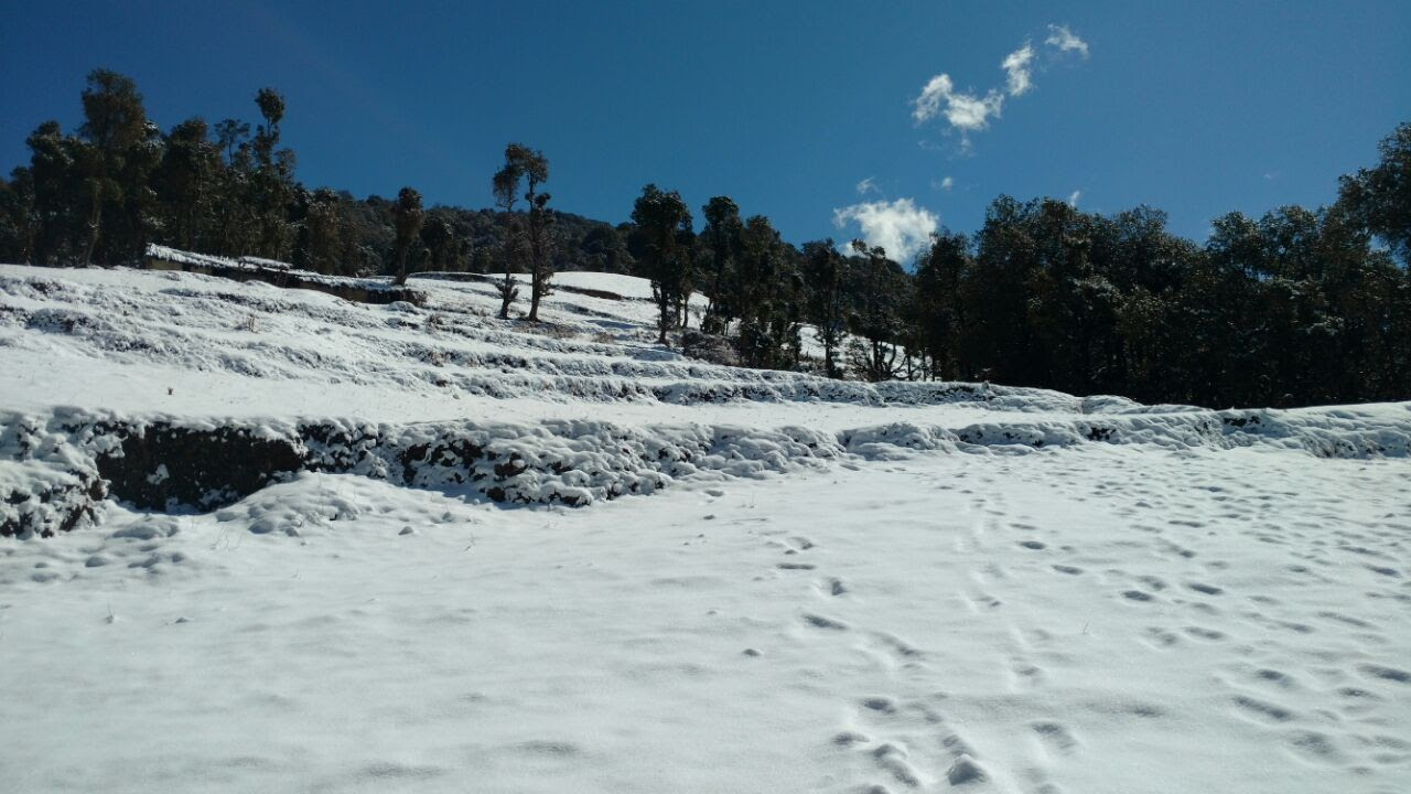 footstep on the snow covered ground uphill and the starting of green forest with clear blue sky over head