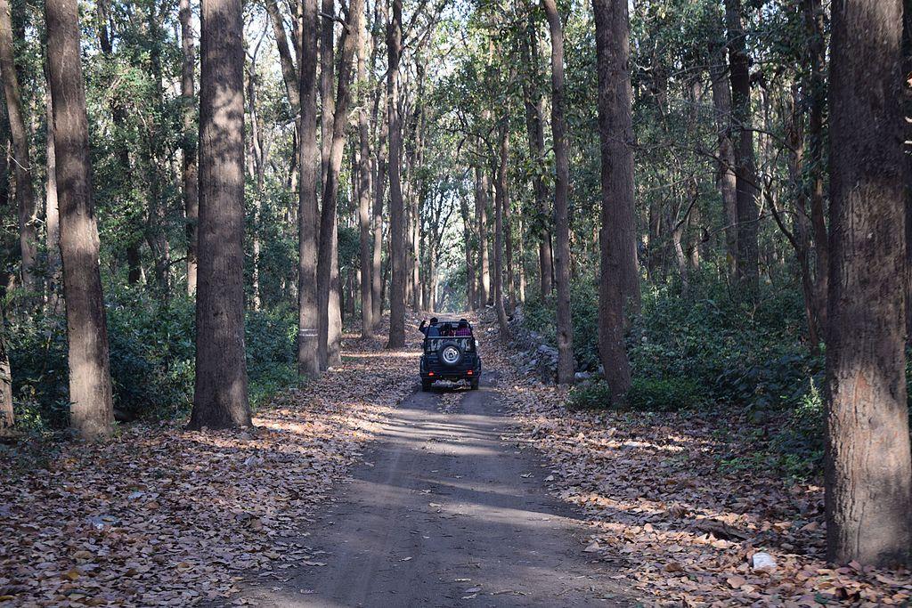 jeep safari in corbett